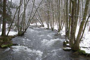 La Haute Lesse, affluent rive droite de la Meuse à Anseremme. Photo prise au village de Lesse. Ardennes Belges.