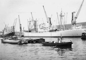 Dock Léopold