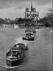 le Pivert sur la Seine